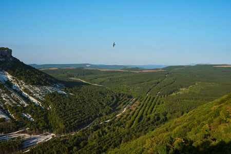 Beautiful views of the mountains and hills covered with vegetation. Green valley between the mountains. Sunny summer day. Soaring bird over sky. Natural background 版權商用圖片