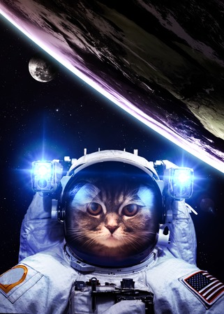 An astronaut cat floats above Earth. Stars provide the background.