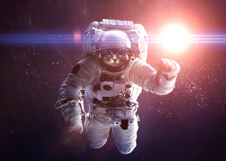 deep space: Beautiful cat in outer space.  Stock Photo