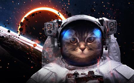 Dzielny kot astronauta na spacer kosmiczny. Ten obraz elementy dostarczone przez NASA Zdjęcie Seryjne