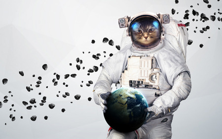 宇宙空間現代美術の猫の宇宙飛行士。 写真素材