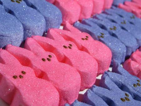 Blau und rosa Kaninchen Marshmellow reihen sich in den Reihen von Kante zu Kante