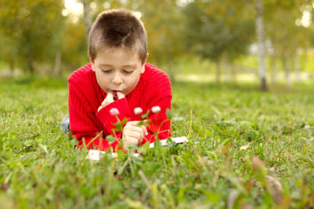 Boy laying on grass in park reading book photo