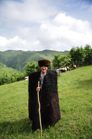 herdsman: Elderly herdsman in summer mountains with sheeps behind