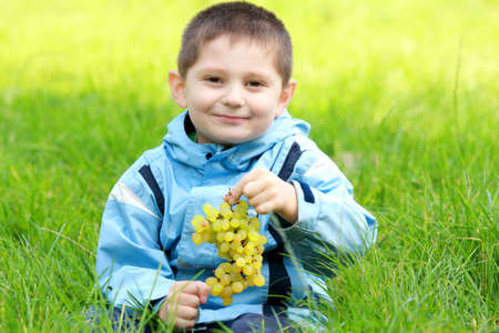 Cute boy with bunch of grapes sitting in green grass Stock Photo - 5528974