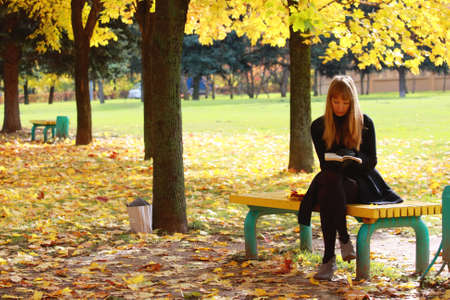Serene park in fall with woman reading book sitting on bench Stock Photo