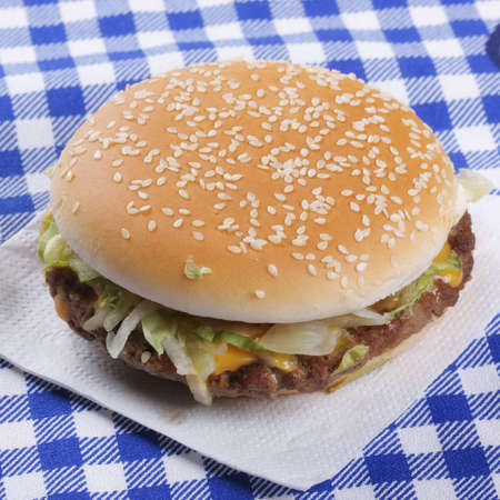 Tasty hamburger with meat and onion laying on tissue closeup photo