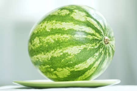 intact: Intact striped watermelon laying on green plate closeup photo