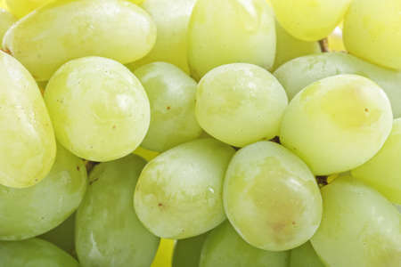 Bunch of green grapes closeup photo selective focus Stock Photo