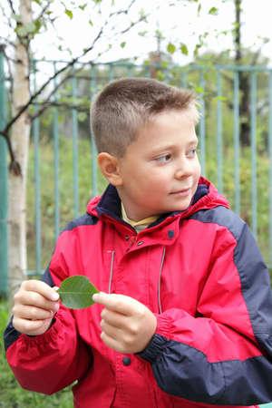 looking sideways: Boy in with green leaf looking sideways outdoors selective focus Stock Photo