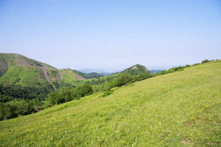 Mountain summer landscape with clear blue sky Stock Photo - 9261325