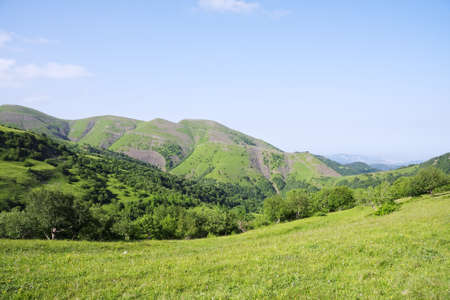 Green and blue summer mountain landscape Stock Photo - 9261323