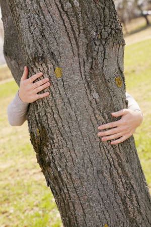 Female hands embracing tree trunk outdoors photo