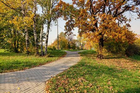 empedrado: Oto�o en el parque con caminos pavimentados