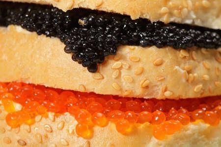 Black and red caviar sandwich closeup photo