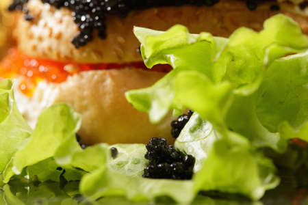 Lettuce and black caviar against sandwich photo