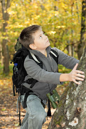 Boy climbing up on tree in autumn forest Stock Photo