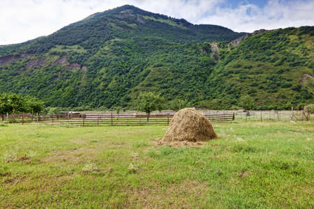foothill: Haystack in yard located near foothill Stock Photo