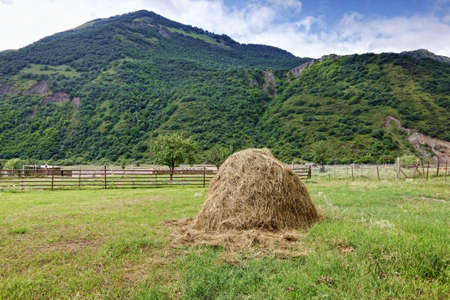 Haystack in yard located near foothill closeup photo Stock Photo - 15560699
