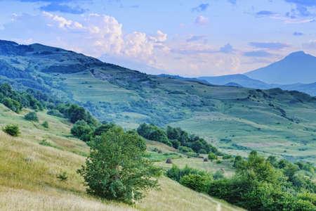 haymow: Hay harvesting in summer mountain meadows
