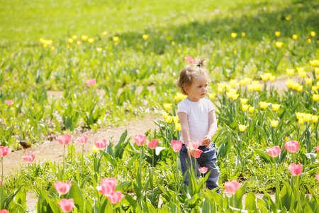 looking sideways: Little girl among tulips in sunny day looking sideways