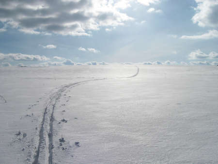 Cross-country skiing track and flat winter landscape
