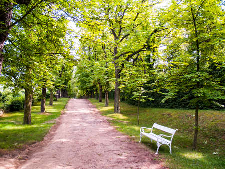 Park scenery with bench Stock Photo