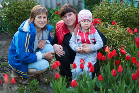 three generations of women: Three generations of of beautiful women portrait sitting together in a tulip field. A happy grandmother with her daughter and granddaughter spending time together.