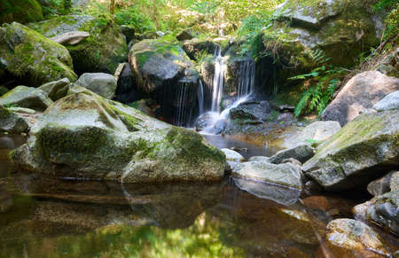 Mountain stream in the forest with moss covered stones and yellow fallen leaves