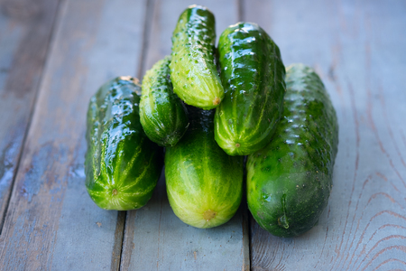 full willow: Photos of a pile of fresh picked cucumbers on wooden background.