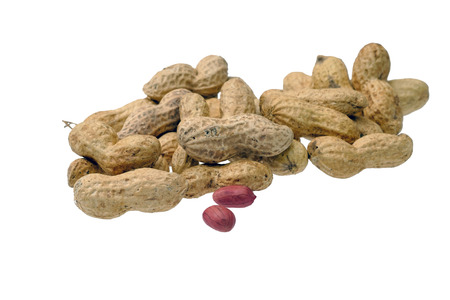 goober: Dried peanuts in closeup isolatd on white background. Selective focus
