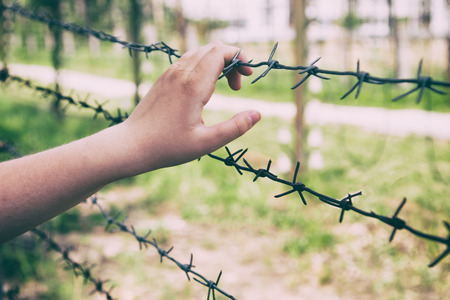 Hands and barbed wire. Territory with barbed wire