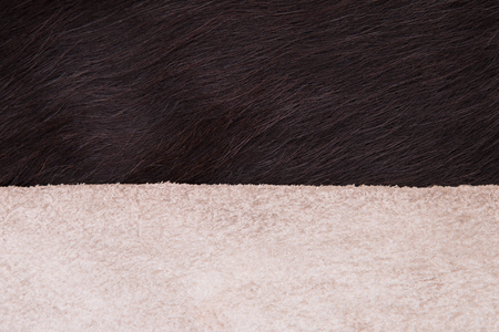 Plush cow's fur and the back of the skin