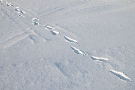 Traces of human steps on the white snow.
