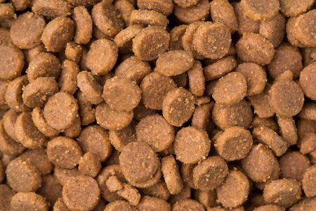 Dry food for cats and dogs close-up.