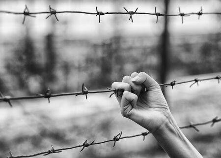 Hand and barbed wire closeup.