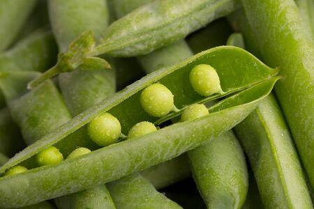 Lots of green pea pods. An open pea pod. Stok Fotoğraf - 128346257