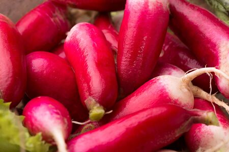 Fruits of ripe radish close-up.