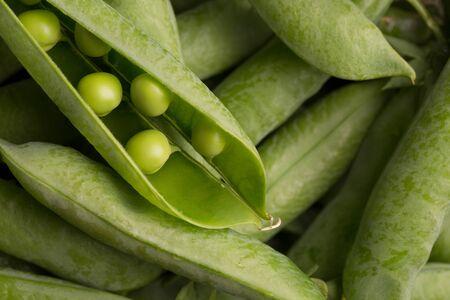 Schoten von jungen Erbsen. Frische grüne Erbsen.