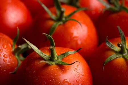 Ripe red tomatoes. Lots of juicy red tomatoes.