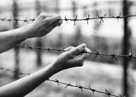 Female hand holding a barbed wire. Territory with barbed wire. The concept of refugees and state borders.