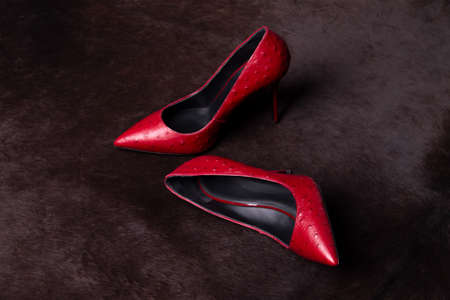 Red shoes on the dark skin of the beast. Archivio Fotografico