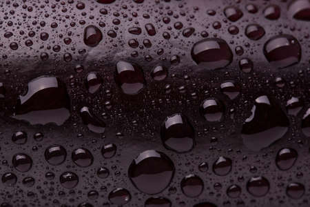 The dark surface of the fruit is covered with water droplets.