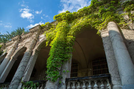 The old facade of the building, covered with green ivy. Dry stone wall with ivy going up. Фото со стока