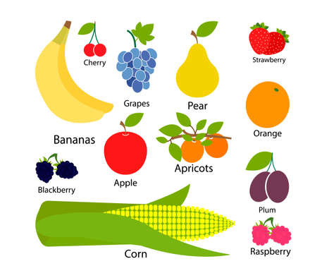 Set of fruits in flat style. Vector illustration Stock Illustratie