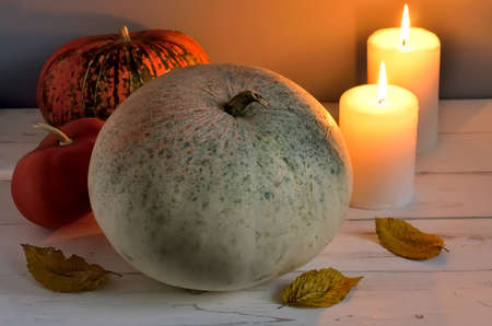 mystique: Unusual holiday pumpkin with autumn leaves and white candles in a mystique light