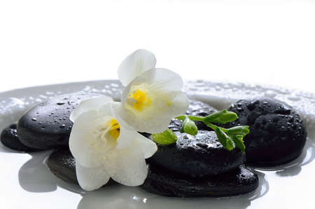 白い花で飾られた水にぬれたスパ石