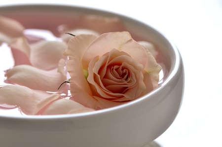 白いボウルにバラの花びらで水を注入 写真素材