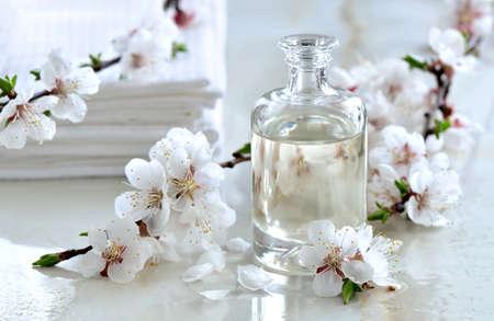 Óleo de massagem spa decorado com ramos de florescência da mola, fórmula especial de óleos essenciais; produto exclusivo e de luxo Imagens