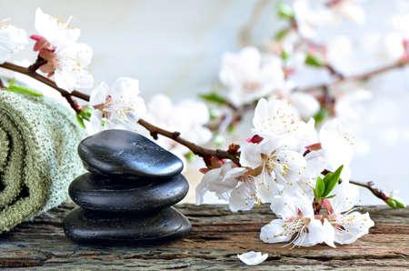 春には桜咲く枝飾られて風化した木の表面に禅石